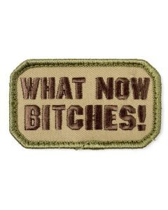 What Now Bitches Morale Patch